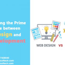 between Web Design and Web Development